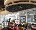 杨重庆镜里香花店设计