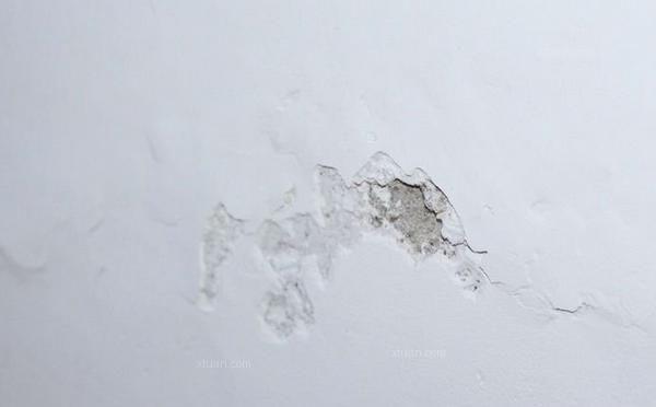 墙面发霉的处理方法