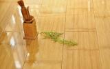 竹木地板的优点以及保养知识