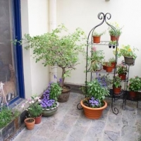 阳台花园享受午后惬意时光装修效果图