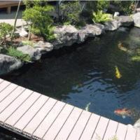 别墅庭院小鱼池设计装修效果图